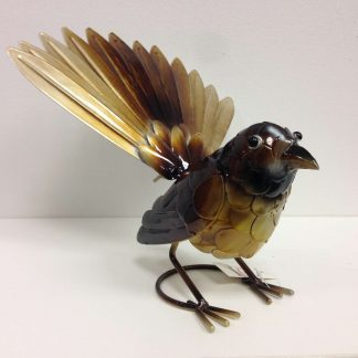 Brown Fantail