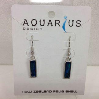 Dainty paua oblong earrings